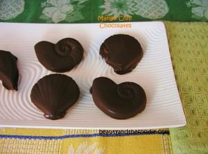 mango chili chocolate