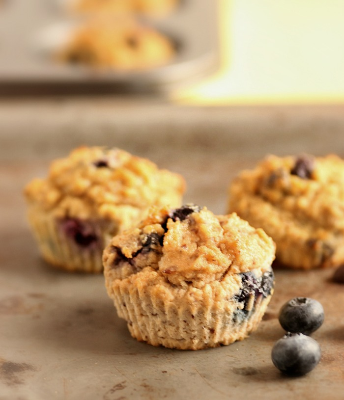 Chocolate Chip Blueberry Fiber Muffins- Low Carb and Paleo