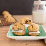 Low carb & paleo Chocolate Chip Hawaiian Cookies