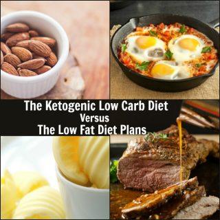Ketogenic Low Carb Diet Versus Low Fat Diet Plans