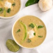 Instant Pot Creamy Chile Verde Chicken Soup